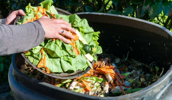 ow to Make Your Own Compost