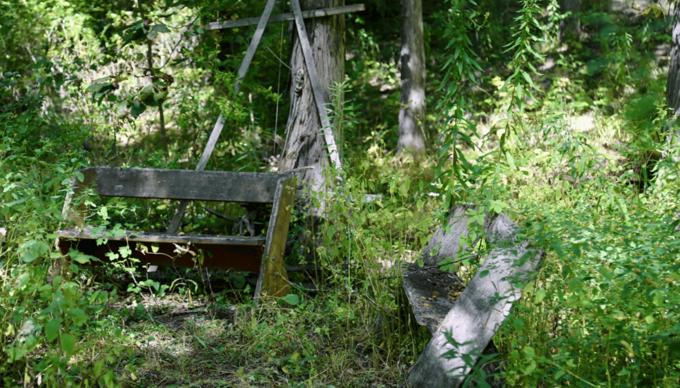 A weathered outdoor classroom at MacDaniels Nut Grove and Food Forest