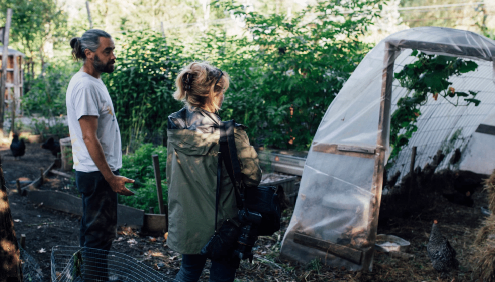 A chicken manure heated mini polytunnel at Edibles Acres homestead
